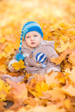 Cute baby in autumn leaves. Royalty Free Stock Photos