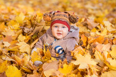 Cute baby in autumn leaves. Royalty Free Stock Images