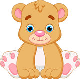 Cute baby bear cartoon. Baby bears are cute and adorable Stock Photography