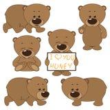 Cute baby bear cartoon. Set of cute baby bears isolated vector illustration Royalty Free Stock Photo