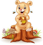 Cute baby bear holding honey pot on tree stump Stock Photography