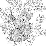 Cute baby bear on tree. Royalty Free Stock Image