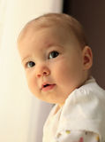 Cute baby Royalty Free Stock Images