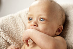 Cute Baby with Big Eyes Royalty Free Stock Photo