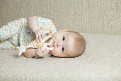 Cute baby biting toy giraffe Stock Photos