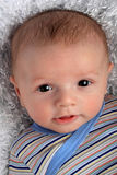 Cute Baby Boy. Cute happy infant baby boy with brown eyes in striped shirt portrait Royalty Free Stock Images