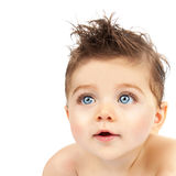 Cute baby boy Stock Image