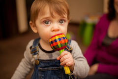 Cute baby boy chewing his toys Stock Photo