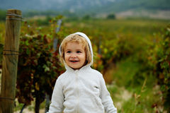 Cute baby boy child Royalty Free Stock Photo
