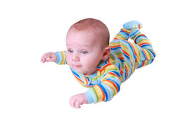 Cute baby boy crawling Stock Image