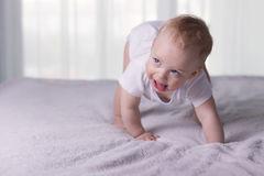 Cute baby boy doing first steps. Lovely infant kid begining to toddle. Cute baby boy doing first steps. Lovely infant kid begining to toddle Royalty Free Stock Photos