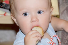 Cute baby boy eating bread stock photography