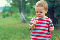 Cute baby boy eating sour cherry outdoor Stock Images