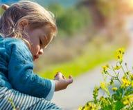 Cute baby boy enjoying flowers stock image