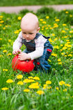 Cute baby boy on a lawn with the ball Stock Photos