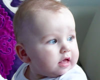 Cute baby boy looking at the window Royalty Free Stock Images