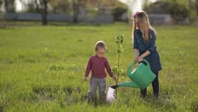Cute baby boy planting tree with sister in garden stock footage