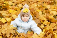 Cute baby boy playing in autumn park. Funny kid sitting among yellow leaves. Adorable toddler with oak and maple leaf. Fall foliag Royalty Free Stock Image