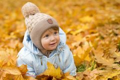 Cute baby boy playing in autumn park. Funny kid sitting among yellow leaves. Adorable toddler with oak and maple leaf Stock Images