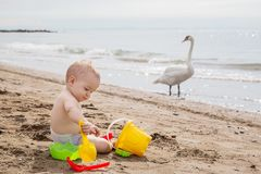 Cute baby boy playing with beach toys stock photos