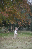 Cute baby boy running through Autumn leaves. A little toddler runs through some fallen leaves in the park while wearing brown dungarees Royalty Free Stock Image