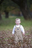 Cute baby boy running through Autumn leaves. A little toddler runs through some fallen leaves in the park while wearing brown dungarees Stock Images