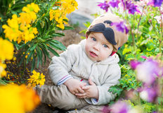 Cute baby boy sitting in the flowers Royalty Free Stock Photography