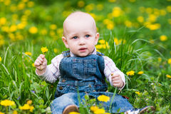 Cute baby boy sitting on a lawn with dandelions Stock Image