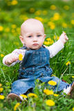 Cute baby boy sitting on a lawn with dandelions Stock Images
