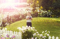 Cute baby boy playing with ball on green grass. Cute baby boy, small, little child with long blond hair, ponytail playing with colorful ball on green grass in stock image