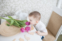 Cute baby boy with tulip Royalty Free Stock Image