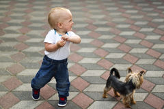 Cute baby boy walking little dog. Funny toddler on the walk Stock Photo
