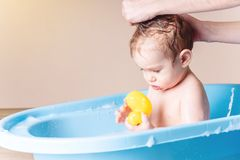 Cute baby boy washing in blue bath in bathroom. Child is playing with a yellow duck and soap foam royalty free stock image