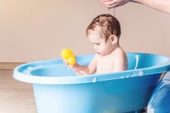 Cute baby boy washing in blue bath in bathroom. Child is playing with a yellow duck and soap foam stock image