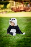 Cute baby boy wearing a Panda bear suit sitting in grass at park. Cute baby boy wearing a Panda bear suit sitting in green grass at park. copy space royalty free stock photo
