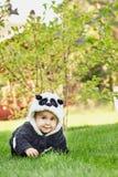 Cute baby boy wearing a Panda bear suit sitting in grass at park. Cute baby boy wearing a Panda bear suit sitting in green grass at park. copy space royalty free stock photography