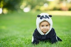 Cute baby boy wearing a Panda bear suit sitting in grass at park. Cute baby boy wearing a Panda bear suit sitting in green grass at park stock images
