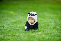 Cute baby boy wearing a Panda bear suit sitting in grass at park. Cute baby boy wearing a Panda bear suit sitting in green grass at park stock photo