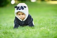 Cute baby boy wearing a Panda bear suit sitting in grass at park. Cute baby boy wearing a Panda bear suit sitting in green grass at park. copy space stock photo