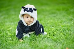 Cute baby boy wearing a Panda bear suit sitting in grass at park. Cute baby boy wearing a Panda bear suit sitting in green grass at park. copy space stock image