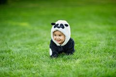 Cute baby boy wearing a Panda bear suit sitting in grass at park. Cute baby boy wearing a Panda bear suit sitting in green grass at park. copy space royalty free stock images