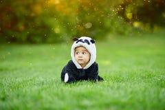 Cute baby boy wearing a Panda bear suit sitting in grass at park. Cute baby boy wearing a Panda bear suit sitting in green grass at park stock photos