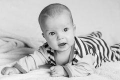 Cute baby boy on a white background Stock Photos
