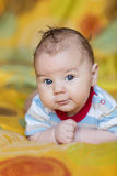 Cute baby on bright background. Portrait Royalty Free Stock Image