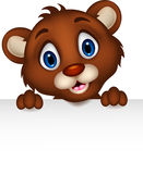 cute baby brown bear cartoon posing with blank sign Royalty Free Stock Photos