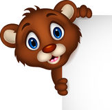 Cute baby brown bear cartoon posing with blank sign Stock Images