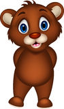 Cute baby brown bear cartoon posing Royalty Free Stock Photos