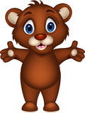Cute baby brown bear cartoon posing Royalty Free Stock Image