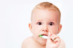 Cute baby brushing his teeth on white Royalty Free Stock Image