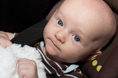 Cute Baby in Car Seat Stock Photos